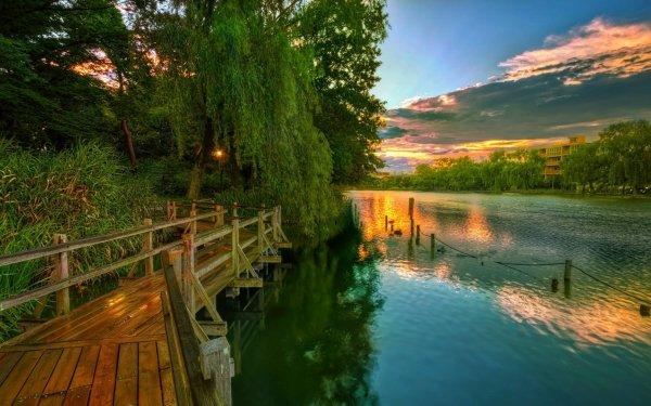 Photography Lake Lakes Tree Green Boardwalk HD Wallpaper | Background Image