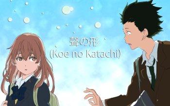 298 koe no katachi hd wallpapers background images wallpaper