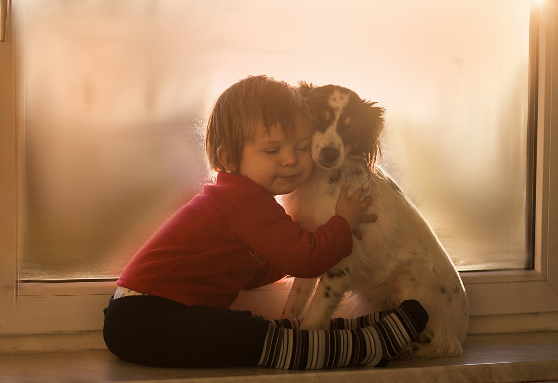 Photography - Child  Little Boy Dog Wallpaper