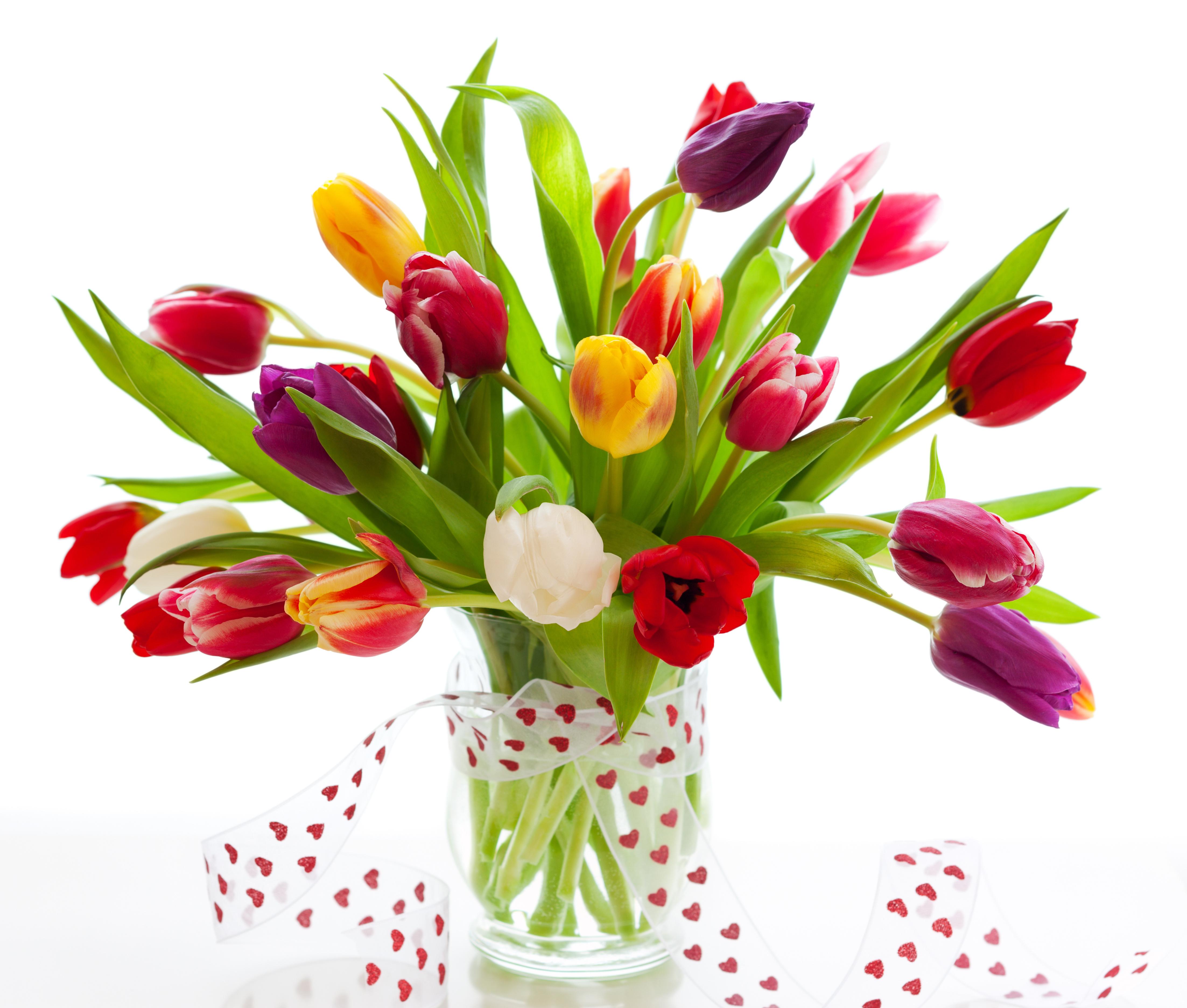 Flower 4k Ultra HD Wallpaper | Background Image
