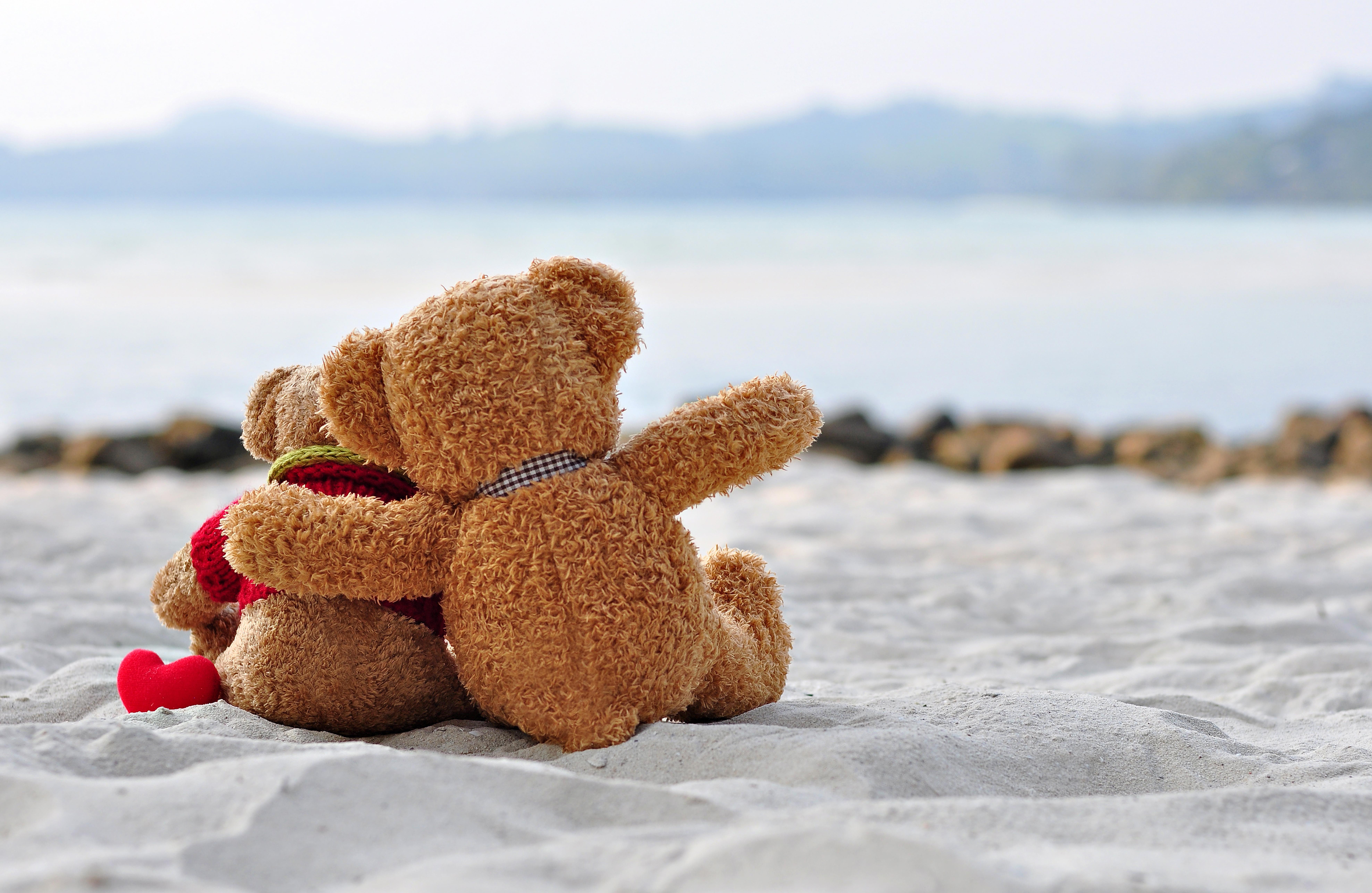 Teddy Bears Cuddling On The Beach 8k Ultra Hd Wallpaper Background