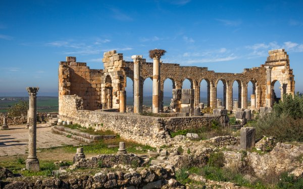 Man Made Roman Forum Volubilis Ruin Morocco Africa Architecture HD Wallpaper   Background Image