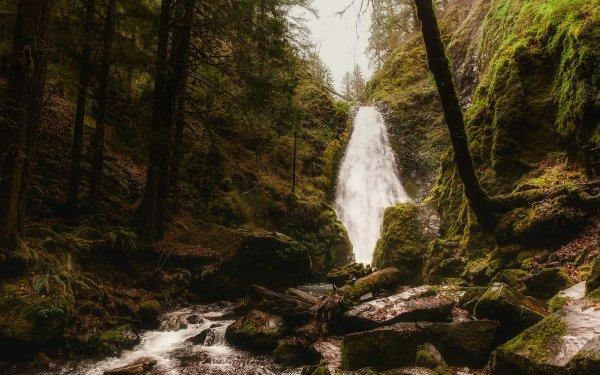 Earth Waterfall Waterfalls Nature Rock Moss Stream HD Wallpaper | Background Image