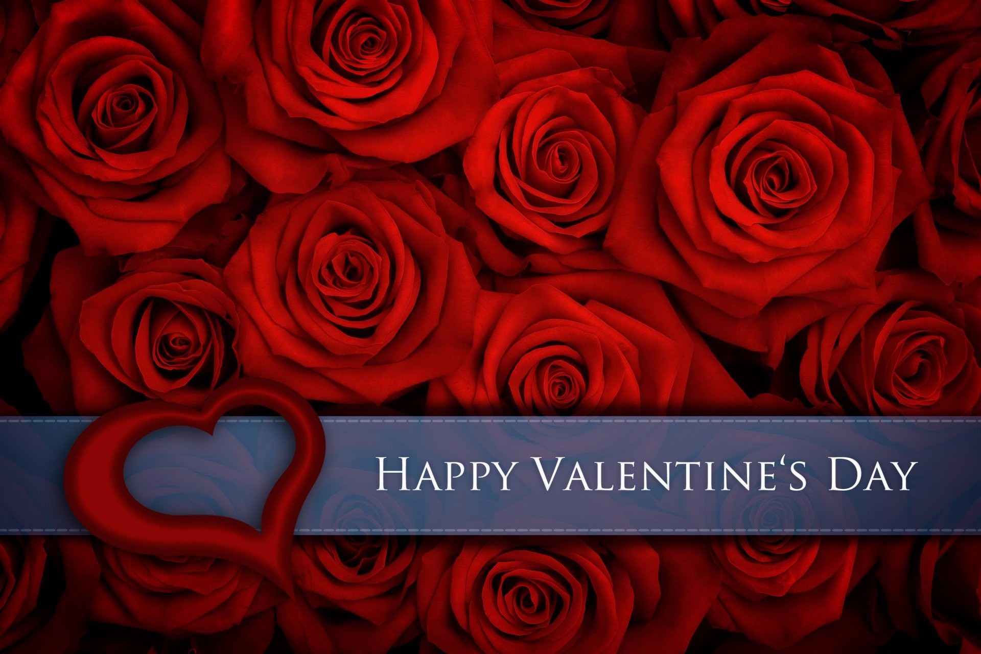 Valentine 39 s day hd wallpaper background image - Valentine s day flower wallpaper ...