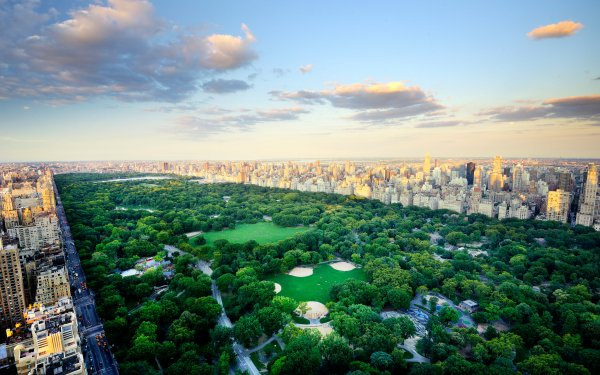 Man Made Central Park Park New York Cityscape USA Building Horizon HD Wallpaper   Background Image