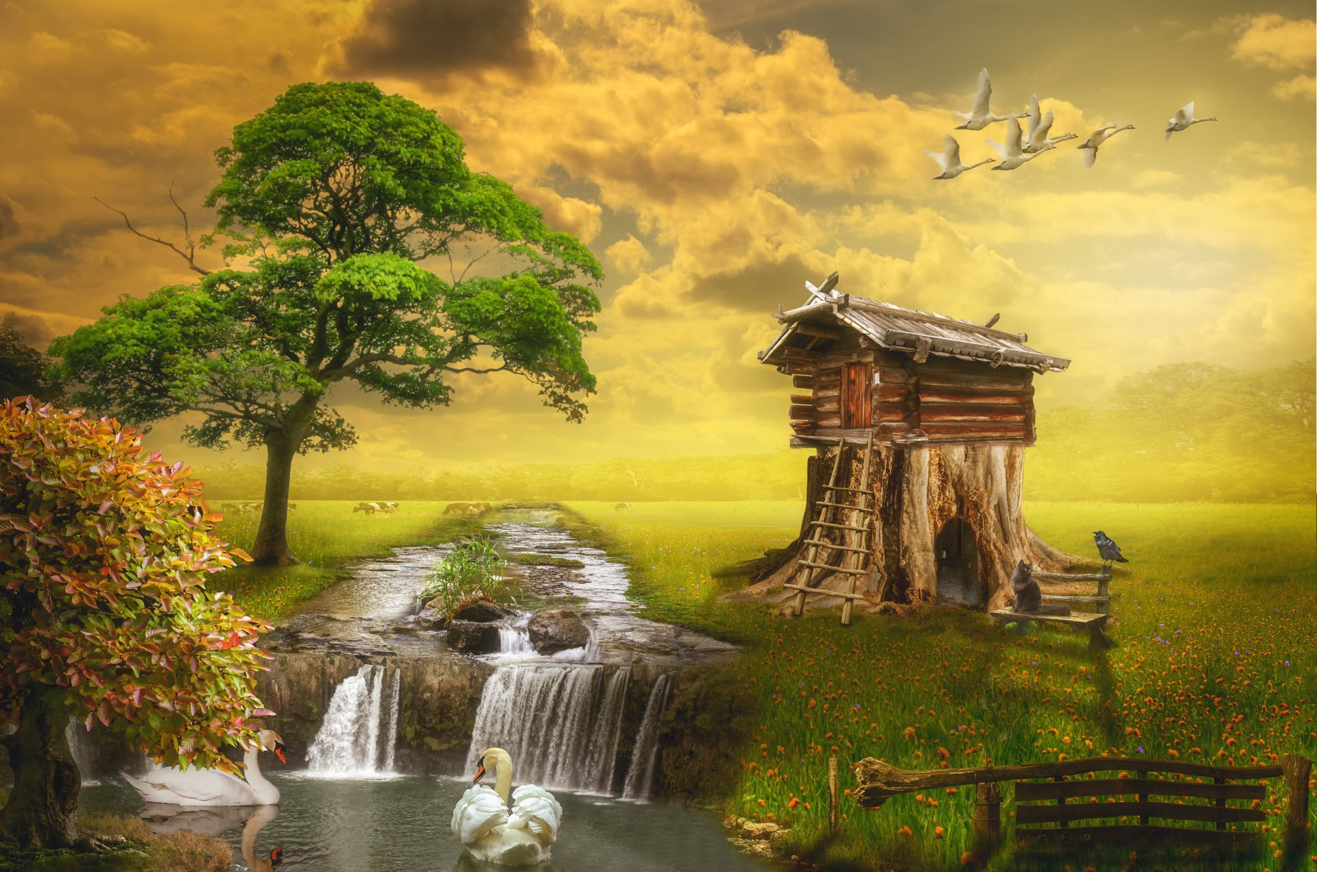 Wallpapers ID:812014