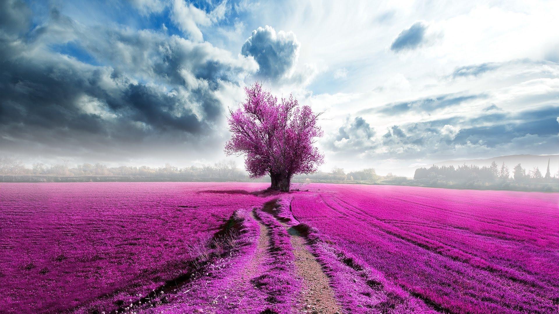 Artistic - Tree  Artistic Field Purple Cloud Wallpaper