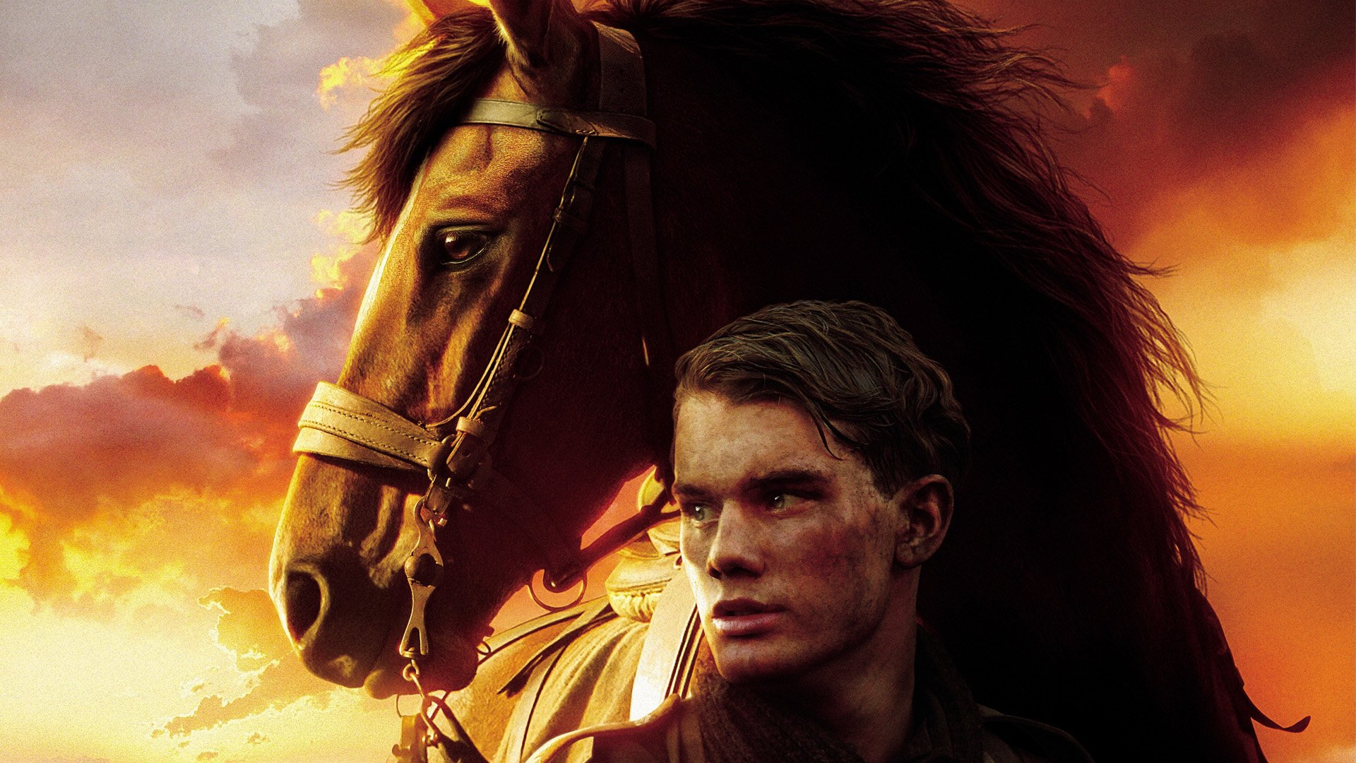 War Horse Hd Wallpaper Background Image 1920x1080 Id 827949 Wallpaper Abyss