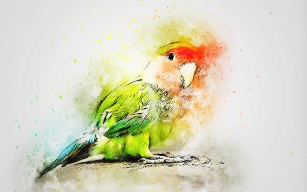 Animal Artistic Parrot Bird Watercolor HD Wallpaper | Background Image