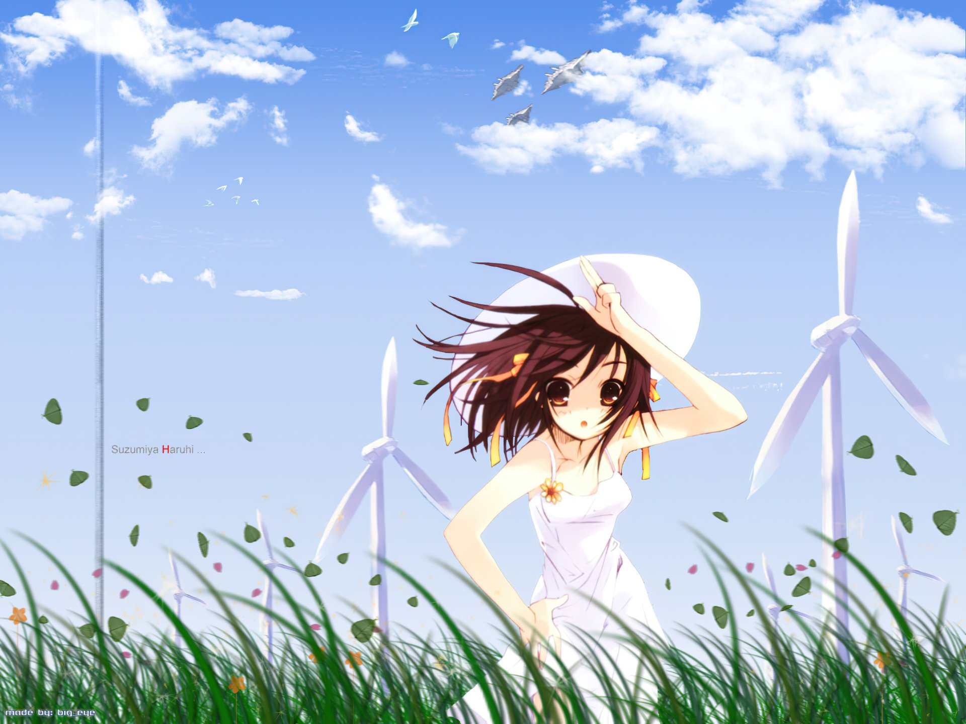 Wallpapers ID:842923