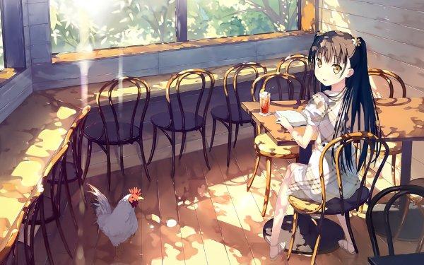 Anime Original Sunlight Sunshine Chicken Chair Table Dress Long Hair 5 Nenme no Houkago HD Wallpaper   Background Image