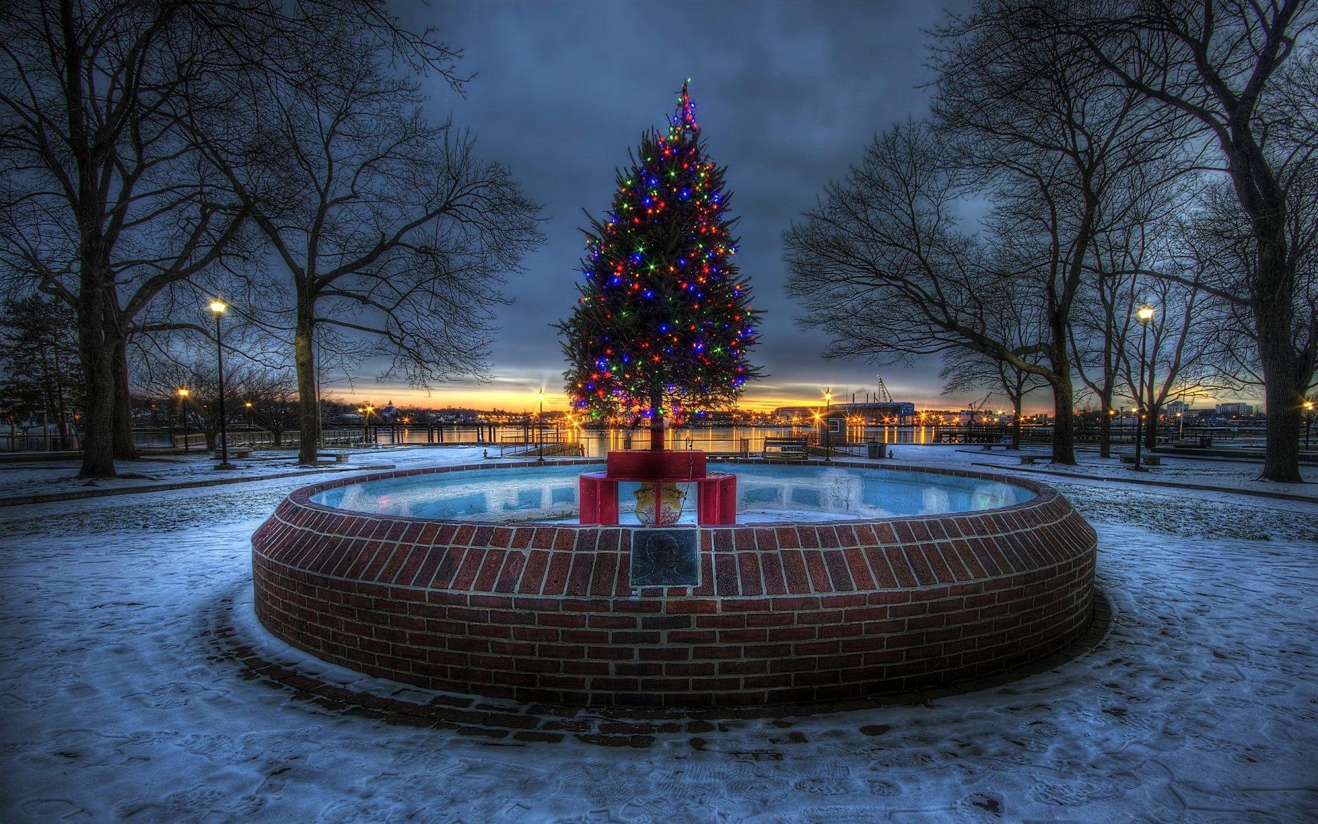 Vacances - Noël  Vacances Christmas Tree Lumière Nuit Fond d'écran
