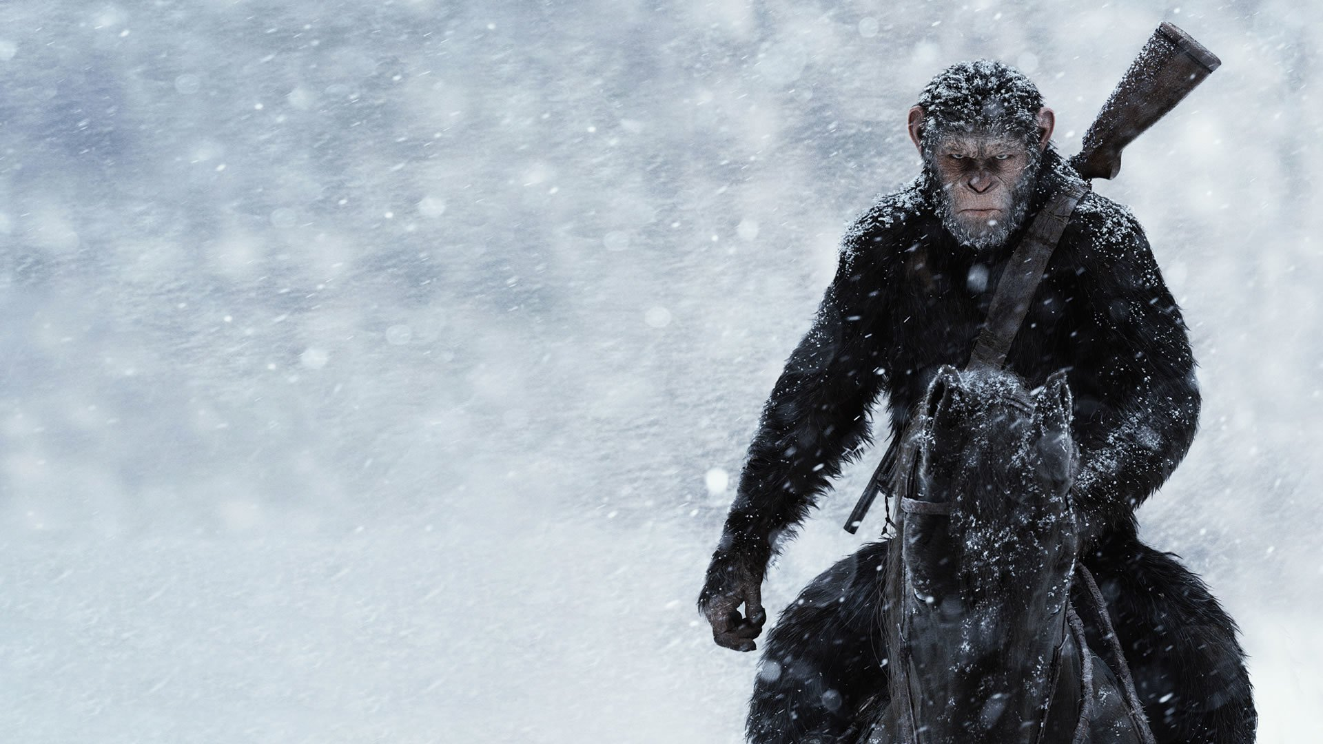 War for the planet of the apes hd wallpaper background - Caesar hd wallpaper ...