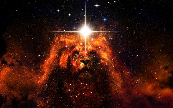 Fantaisie Lion Animaux Fantastique Espace Etoiles Animaux Fond d'écran HD | Arrière-Plan