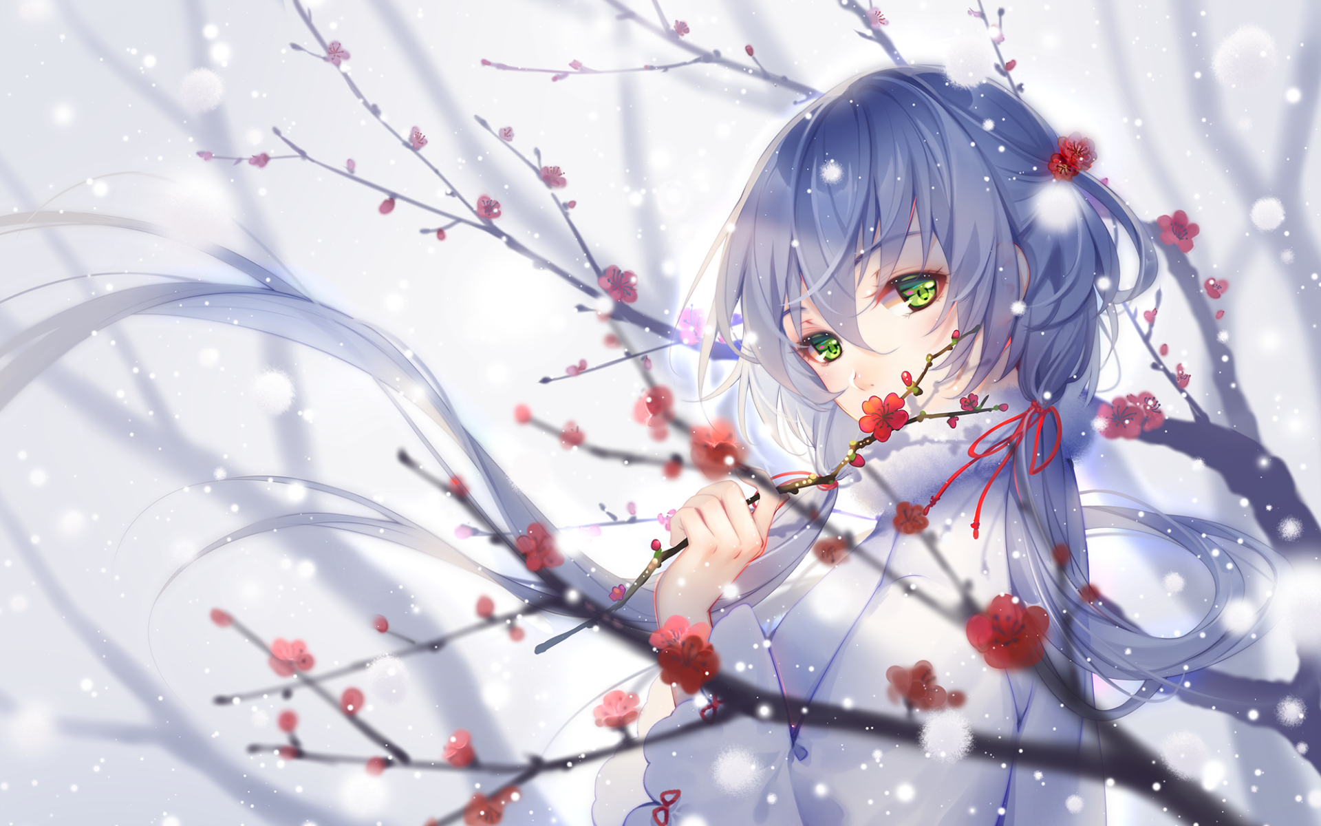 Wallpapers ID:899790