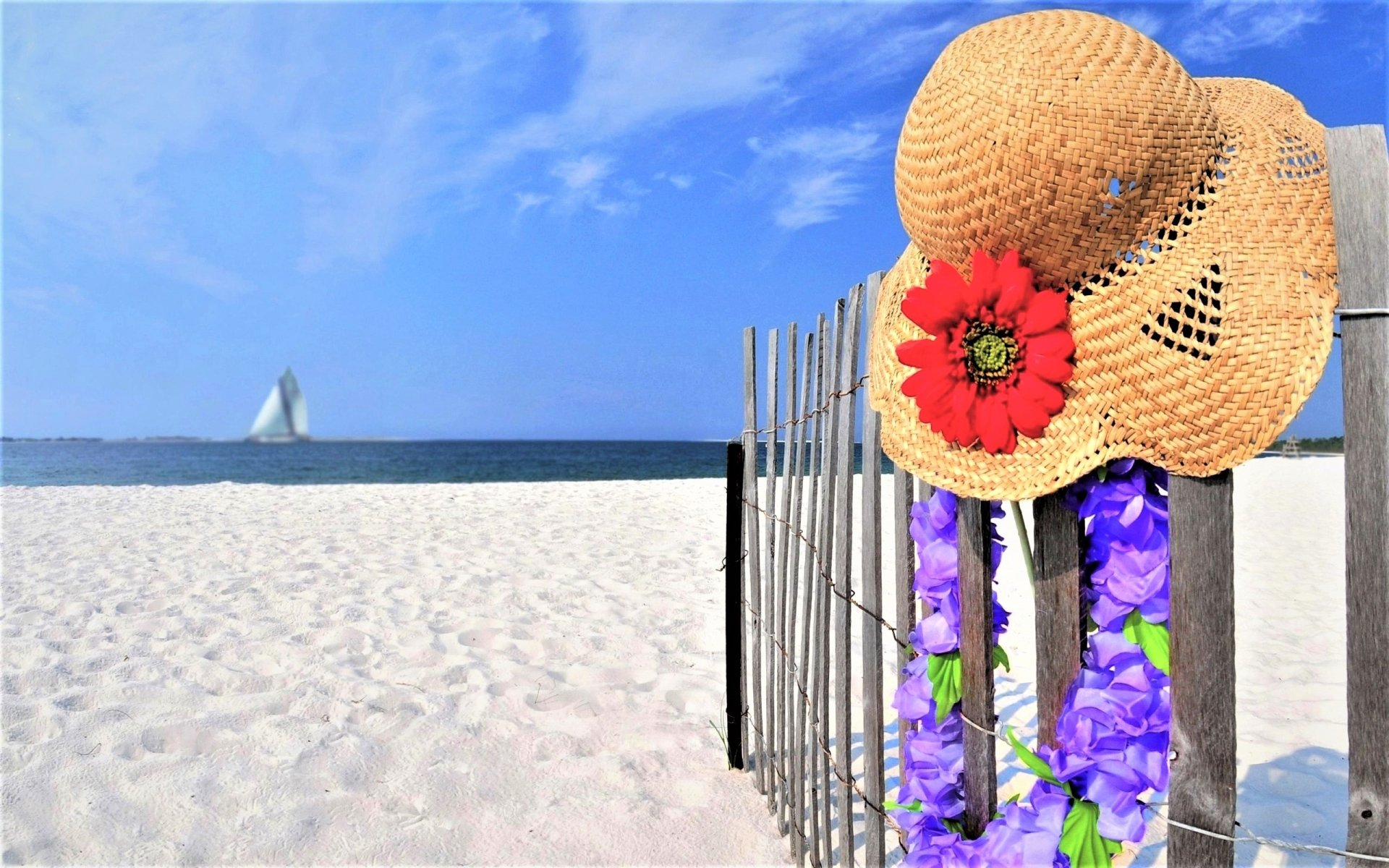 Artistic - Summer  Artistic Photography Straw Hat Flower Beach Ocean Sea Wallpaper