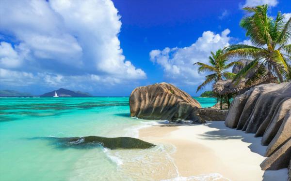 Tierra/Naturaleza Playa Seychelles Isla Tropico Océano Sea Rock Palmera Fondo de pantalla HD | Fondo de Escritorio
