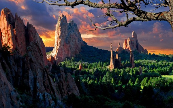 Earth Landscape Mountain Tree Forest Rock Colorado USA Spring HD Wallpaper | Background Image