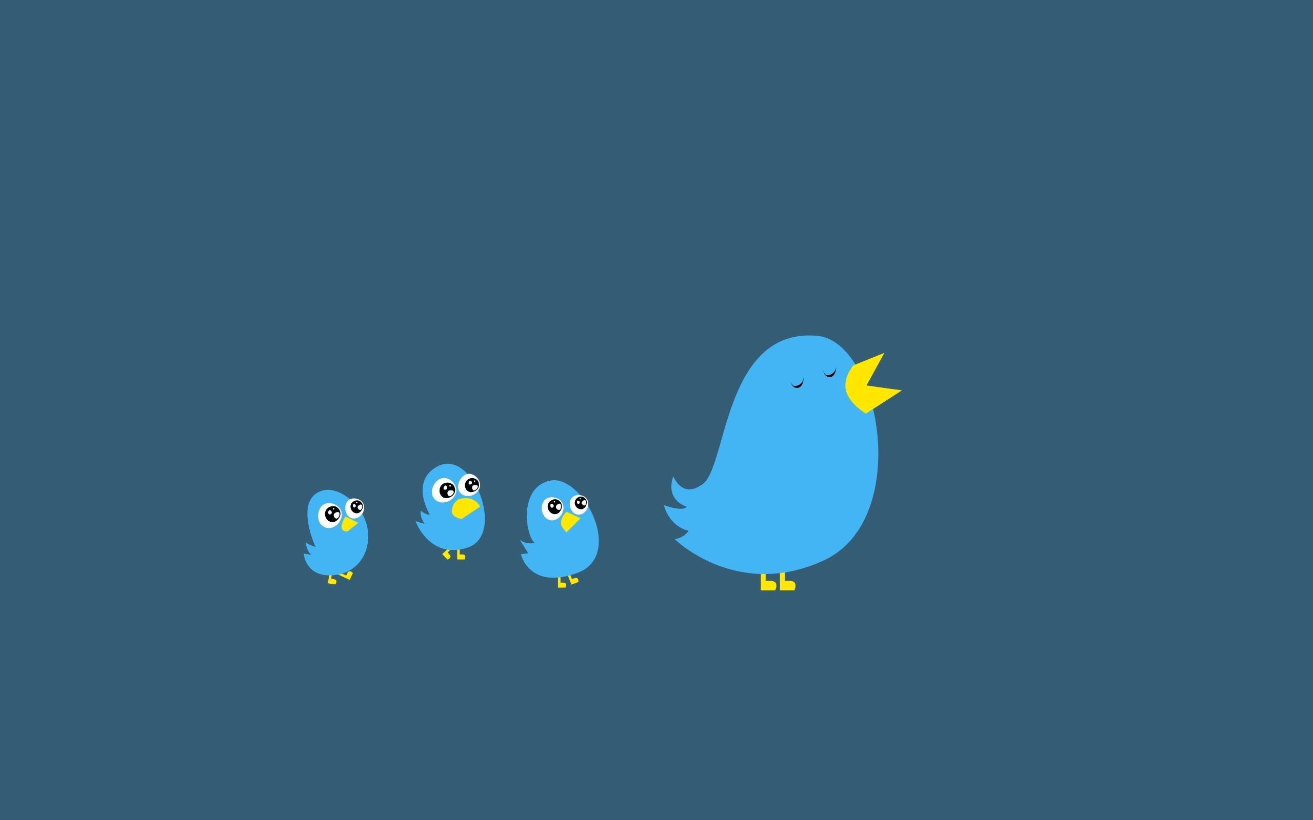 Twitter Hd Wallpaper Background Image 2560x1600 Id