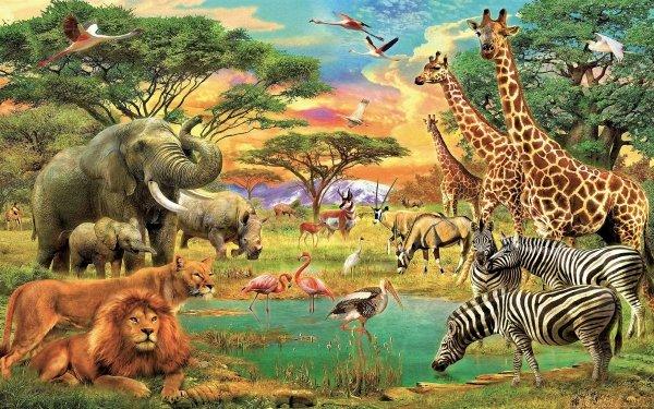 Animal Artistic Africa Tree Pond Elephant Zebra Giraffe Bird Flamingo Lion Antelope HD Wallpaper | Background Image