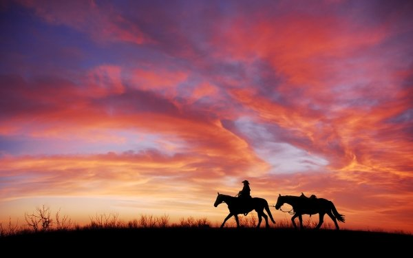 Photography Cowboy Horse Sunset Silhouette Cloud Sky HD Wallpaper | Background Image
