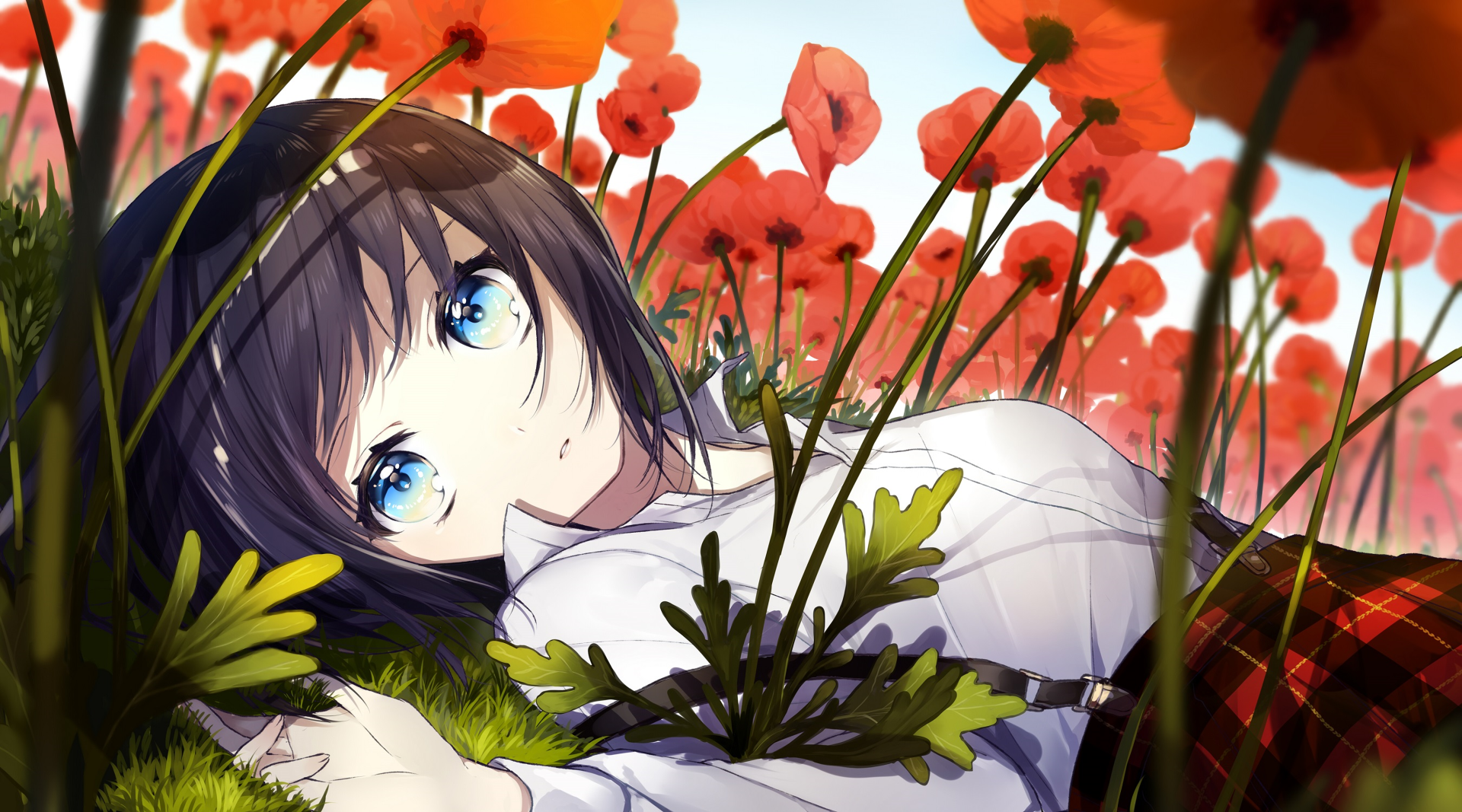Wallpapers ID:913836