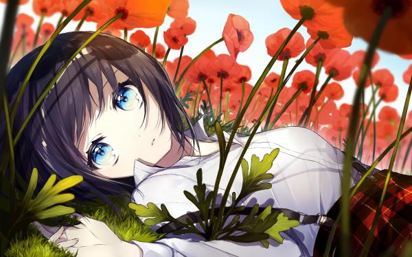 Anime Original Short Hair Black Hair Blue Eyes Poppy Flower HD Wallpaper | Background Image