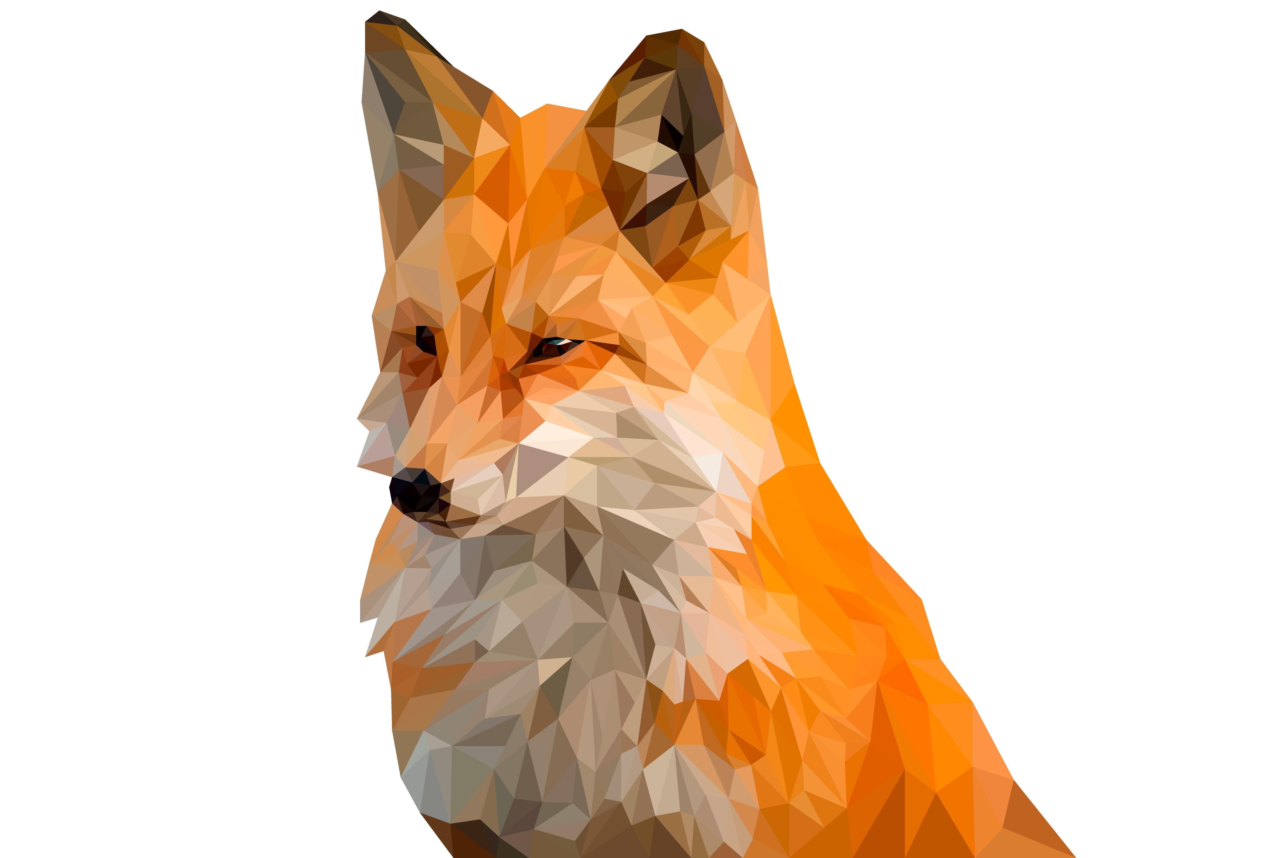 Fox Wallpaper 4k Ultra Fondo De Pantalla Hd Fondo De