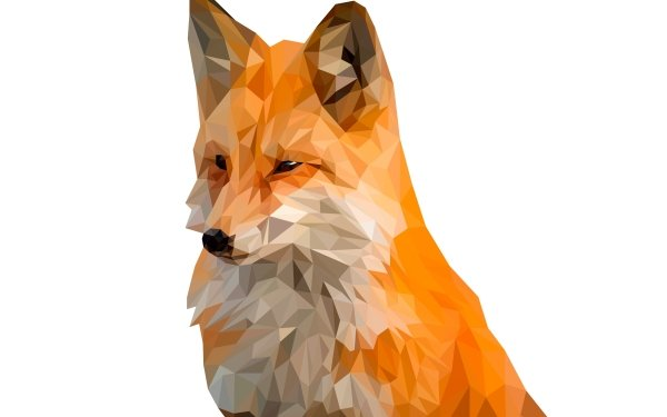 Abstract Facets Fox Low Poly Polygon Digital Art HD Wallpaper | Background Image