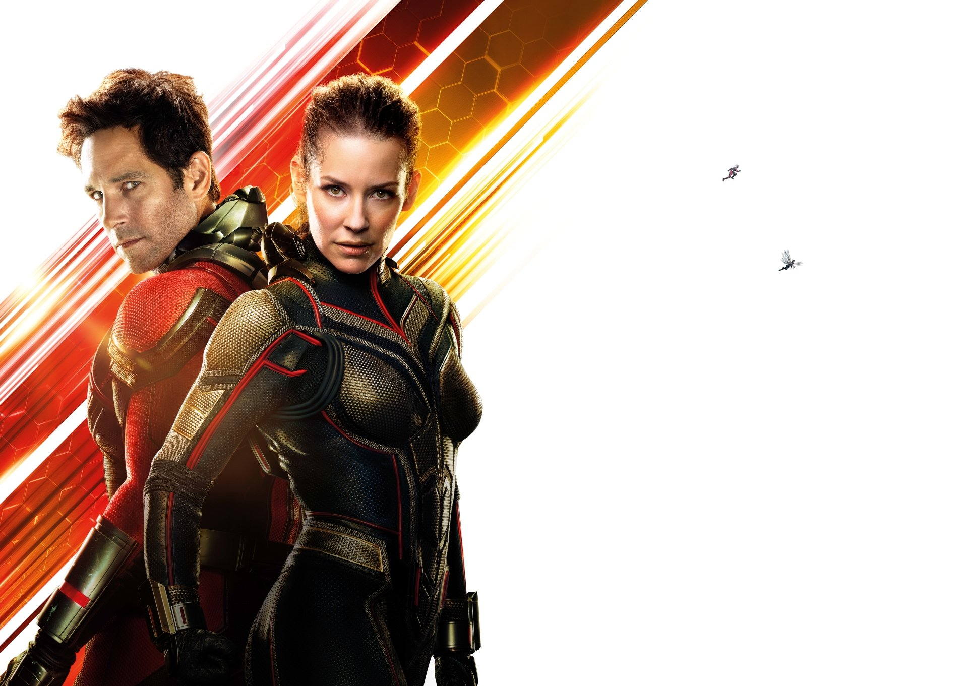 Ant Man And The Wasp Wallpaper: Ant-Man And The Wasp 8k Ultra HD Wallpaper