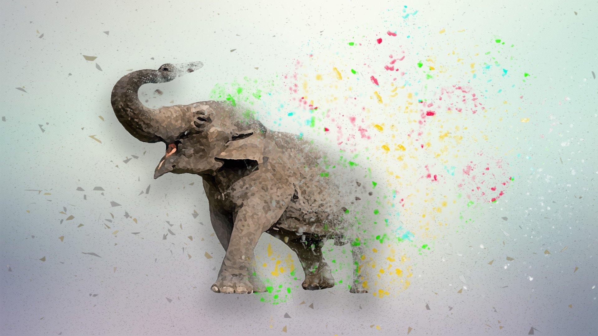 Elephant Wallpaper Hd Wallpaper Background Image