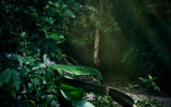 Vehicles Mercedes-Benz AMG GT Mercedes-Benz Green Car Tree Mercedes-Benz AMG Sport Car Supercar HD Wallpaper | Background Image