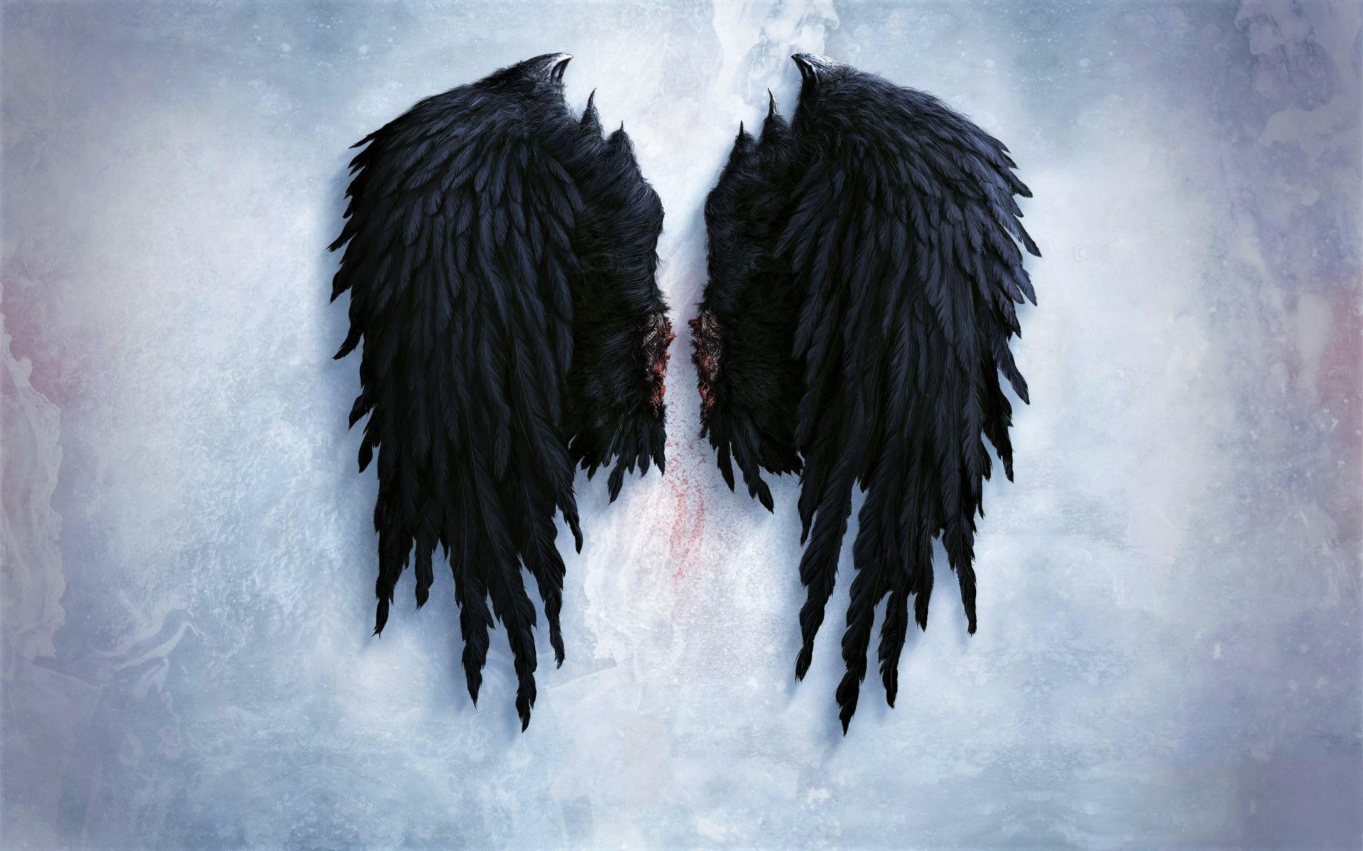 Black Angel Wings Fondo De Pantalla Hd Fondo De Escritorio