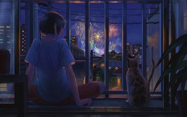 Anime Original Cat HD Wallpaper   Background Image