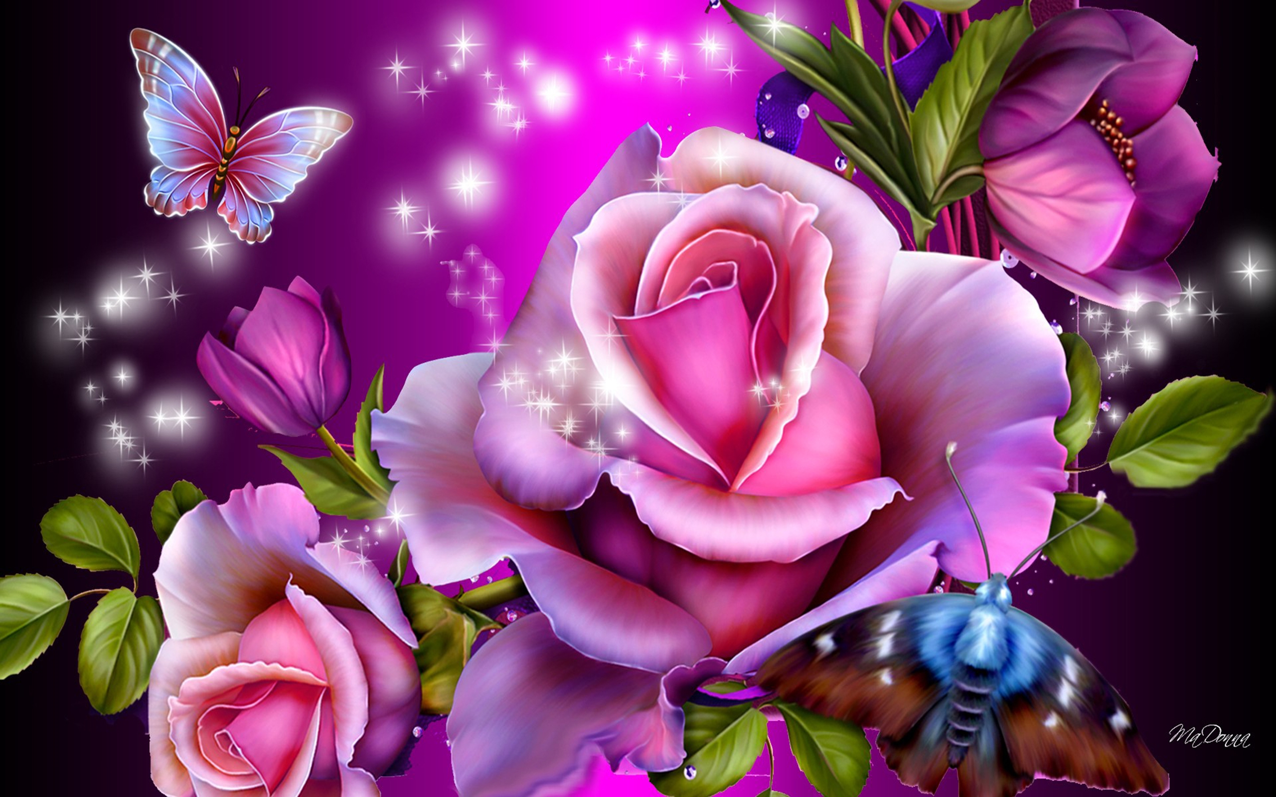 Roses And Butterflies Hd Wallpaper Background Image