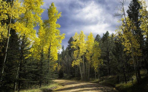 Earth Fall Colorado Dirt Road HD Wallpaper | Background Image