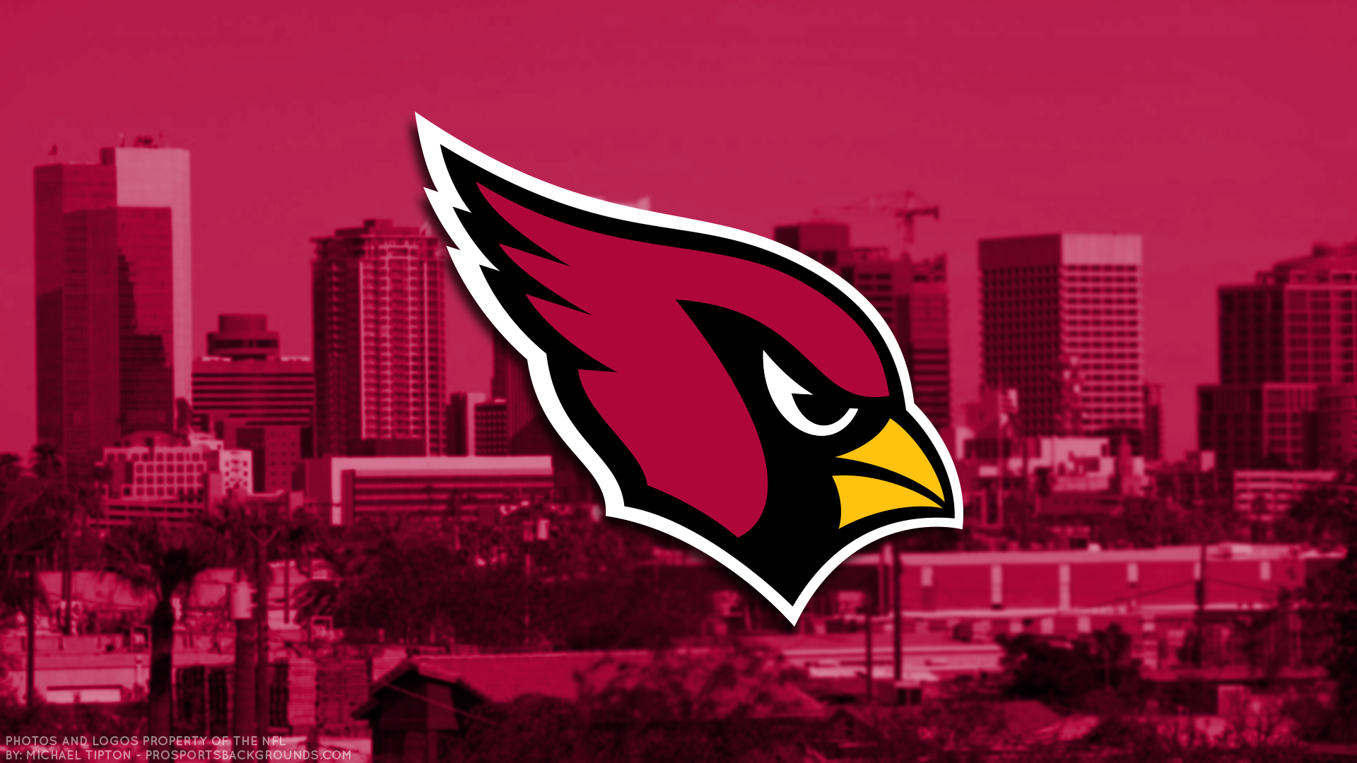 Arizona Cardinals HD Wallpaper | Background Image | 1920x1080 | ID:981706 - Wallpaper Abyss