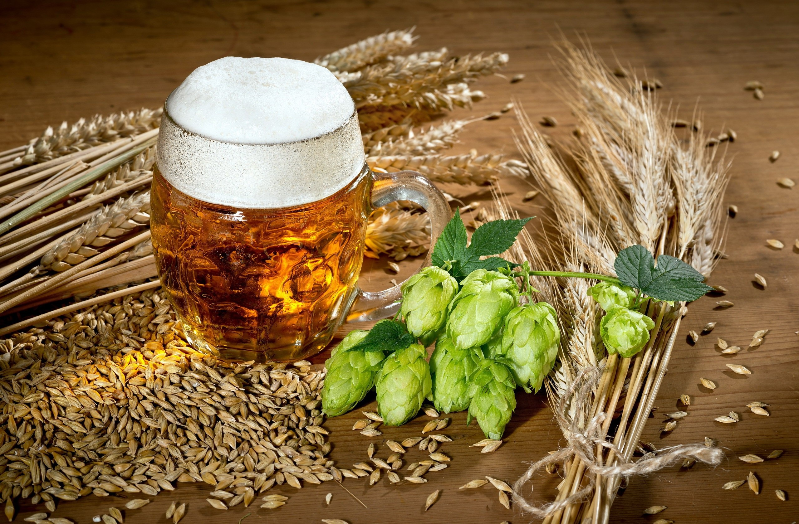 beer hd wallpaper background image 2560x1680 id 981891