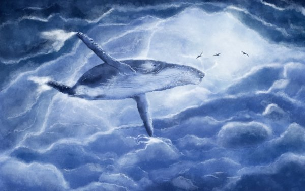 Fantasy Whale Fantasy Animals Cloud HD Wallpaper   Background Image