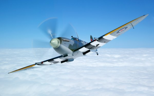Military Supermarine Spitfire Military Aircraft Aircraft Warplane HD Wallpaper | Background Image