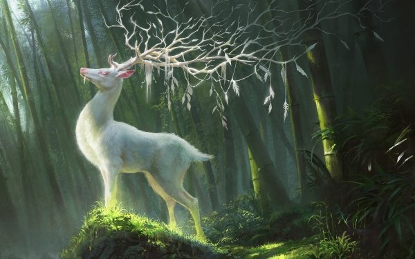 Fantasy Deer Fantasy Animals Bamboo HD Wallpaper   Background Image